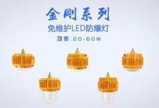 LED节能防爆灯